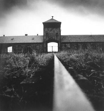 EntrŽe Birkenau