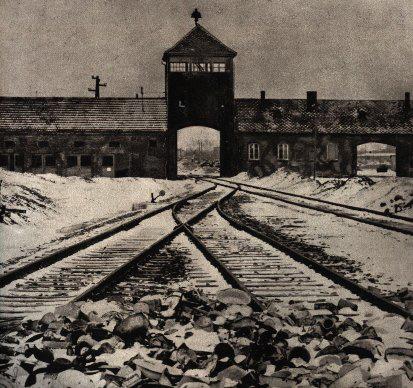 Sortie Birkenau